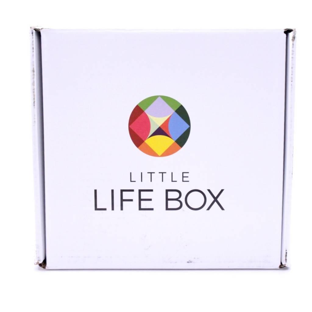 Little Life Box January 2016 3