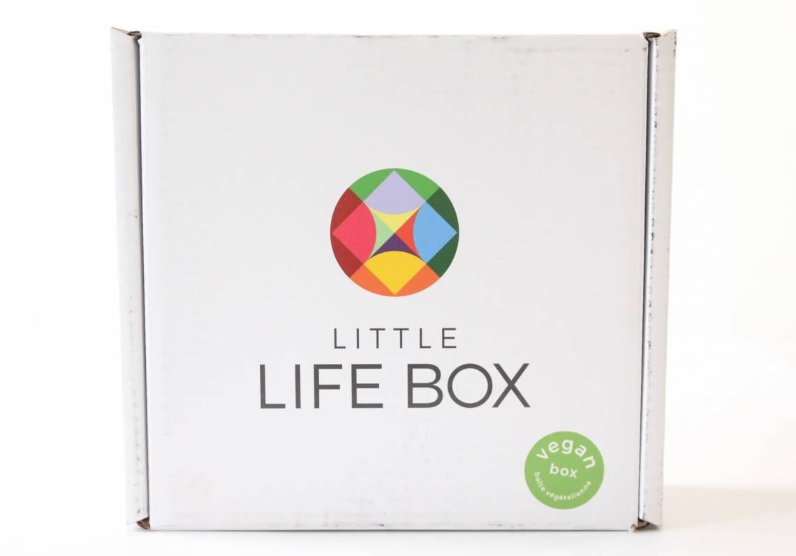 Little Life Box Review June 2016 1