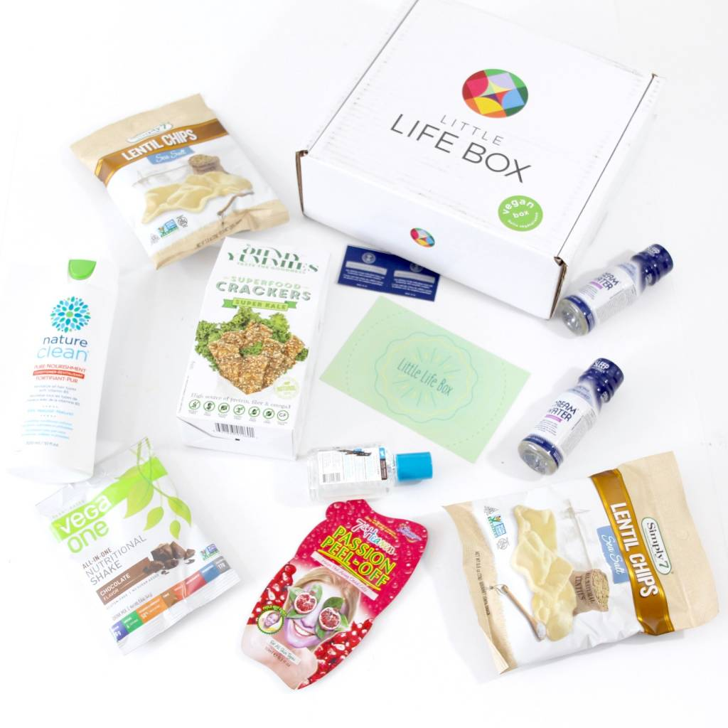 Little Life Box Review July 2016 5