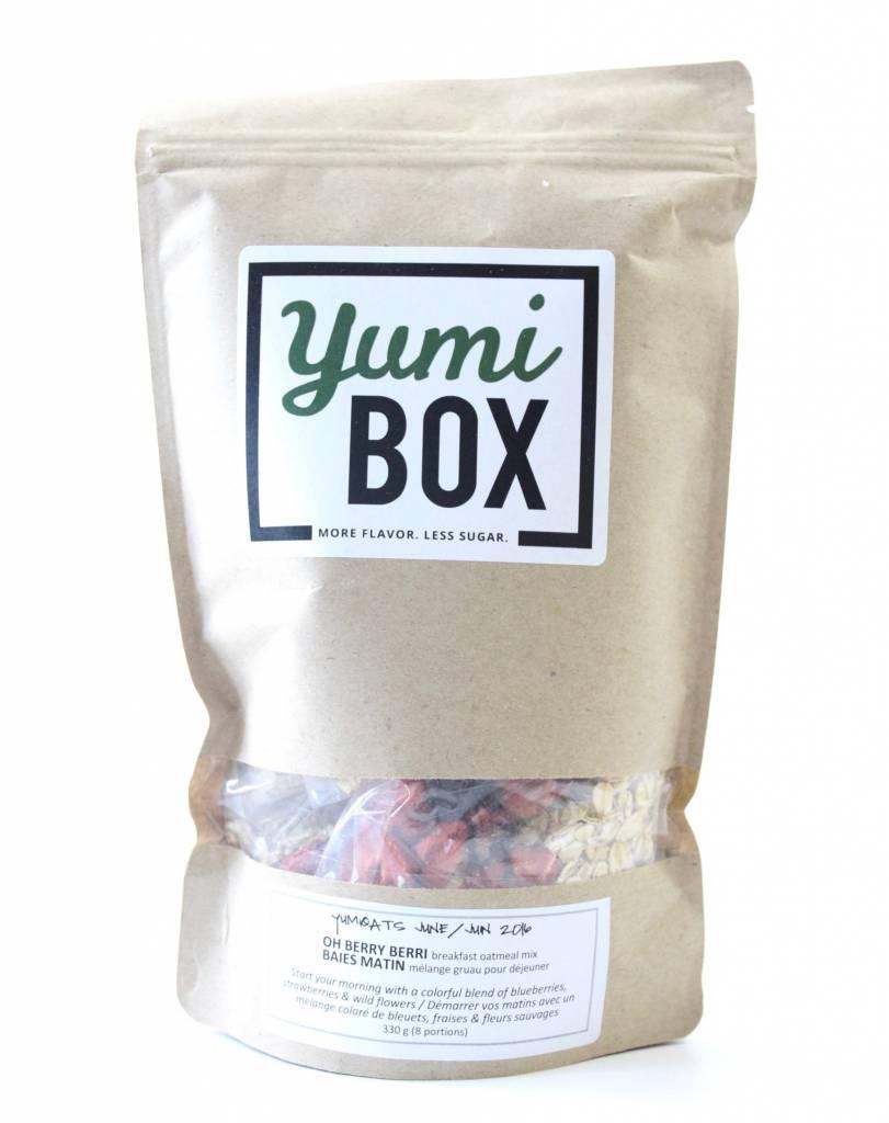 Yumi Box Review June 2016 6
